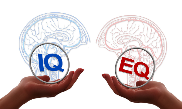 YOUR EQ IS MORE IMPORTANT THAN YOUR IQ